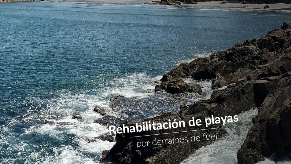 Rehabilitación playas